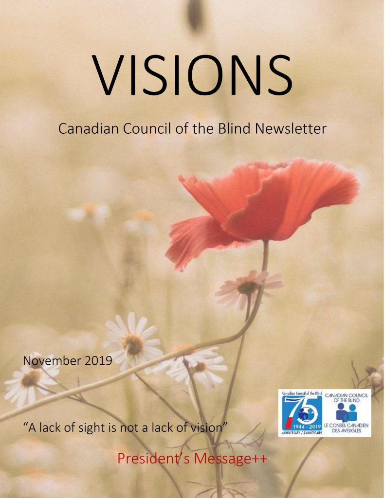 Cover of the VISIONS newsletter for November, featuring a poppy and some daisies.